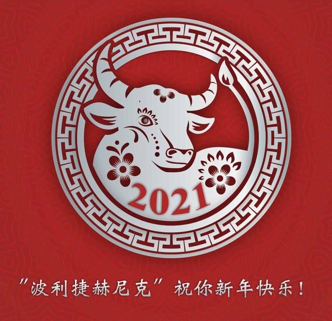 Наступил 2021-ый — год Быка!